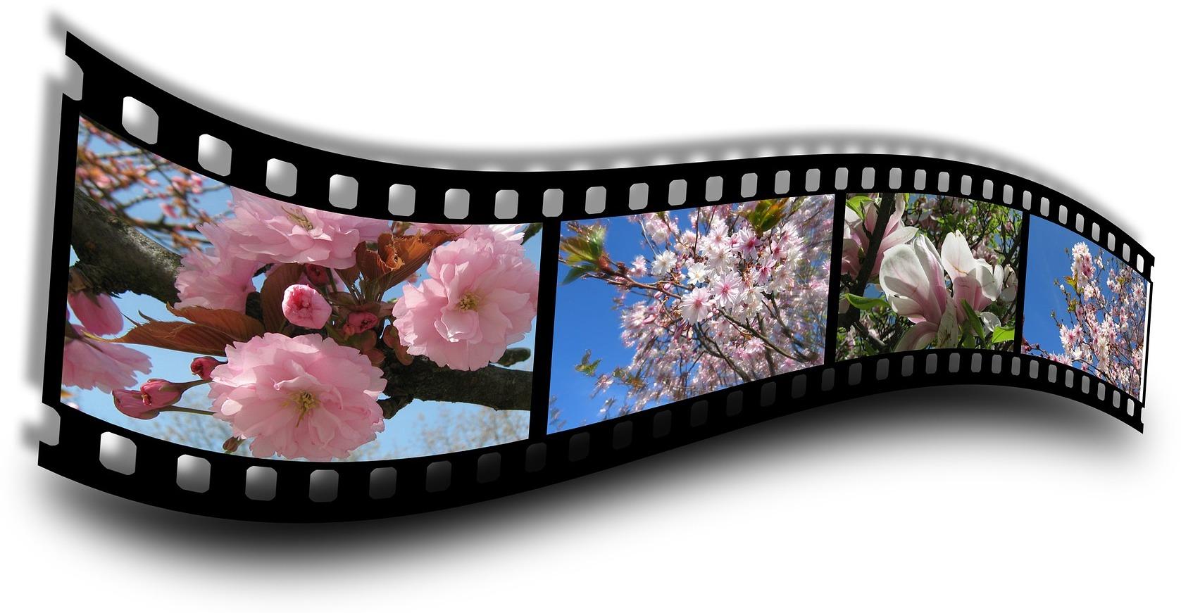 spring-69922_1920 (2)